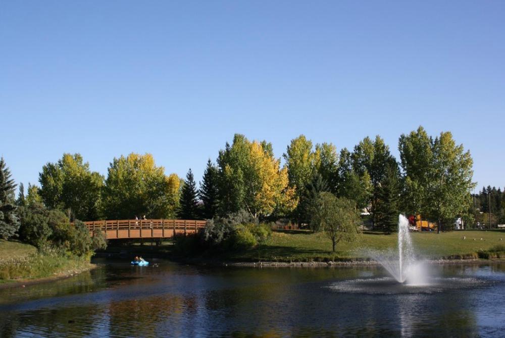 Red Deer community image