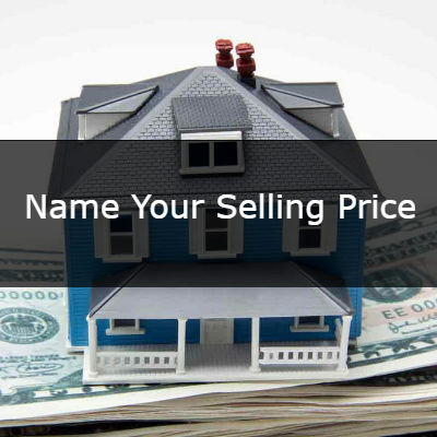 Name Your Selling Price