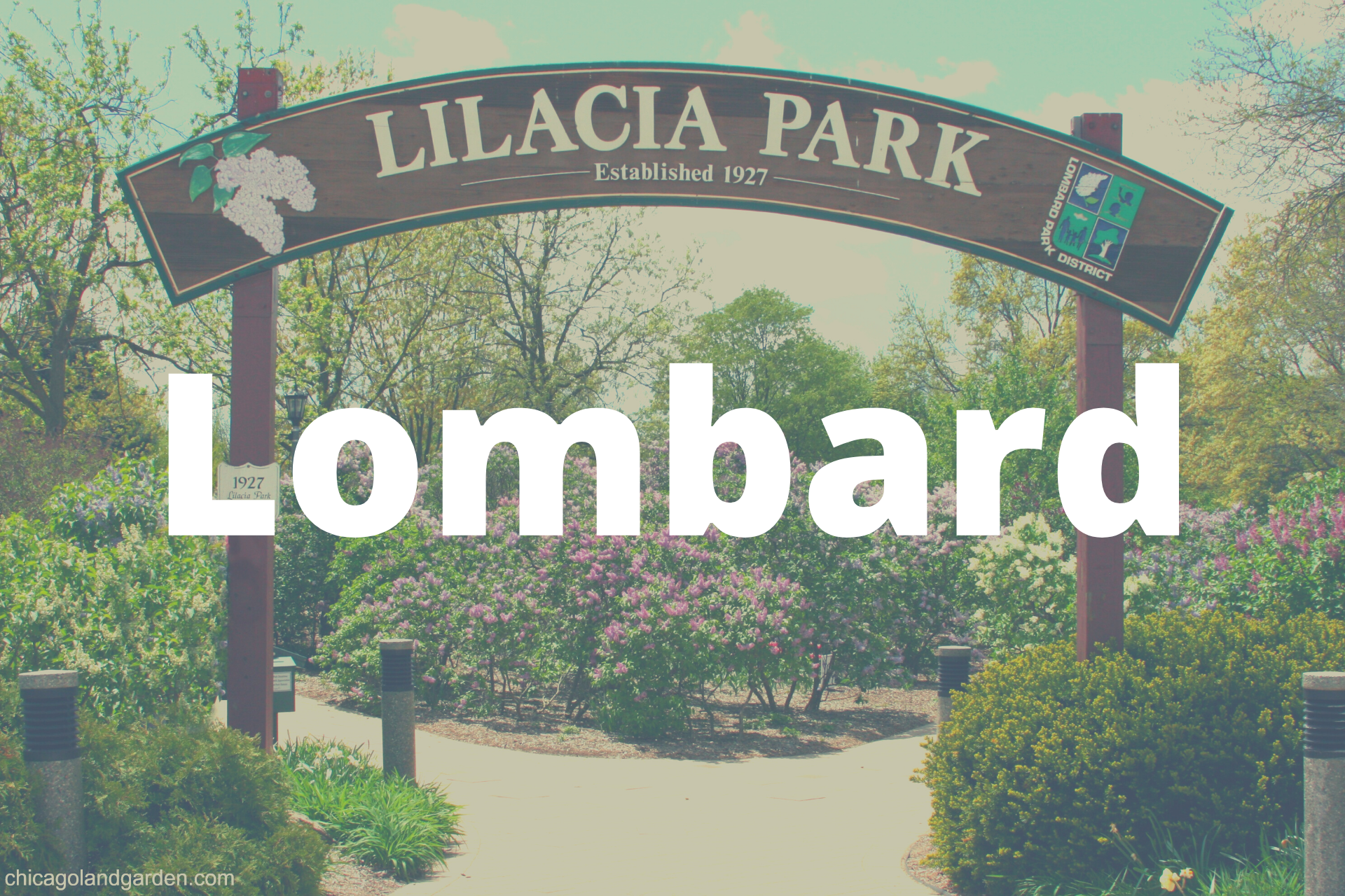 Lombard Card