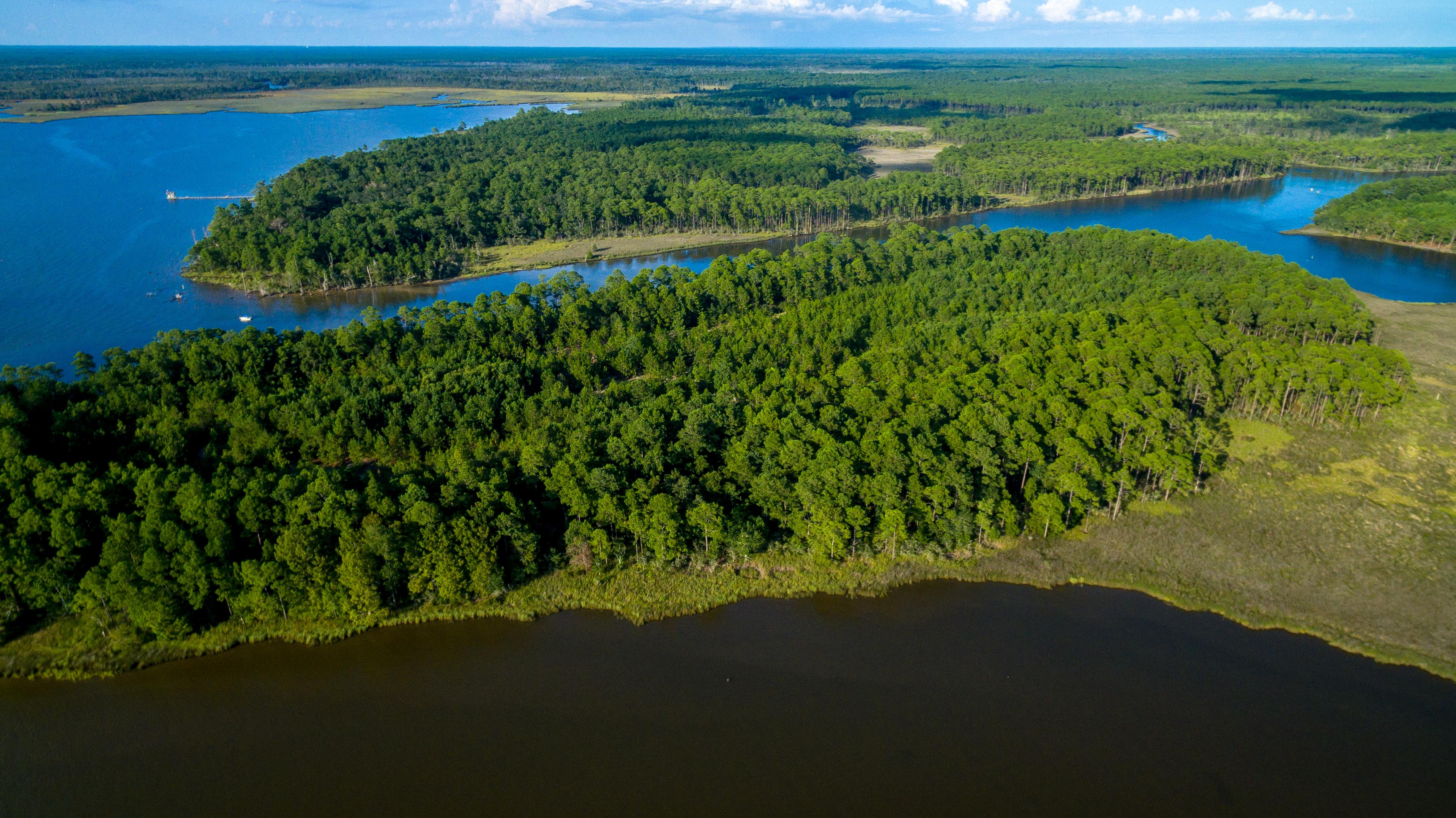 The Island of South Walton community image