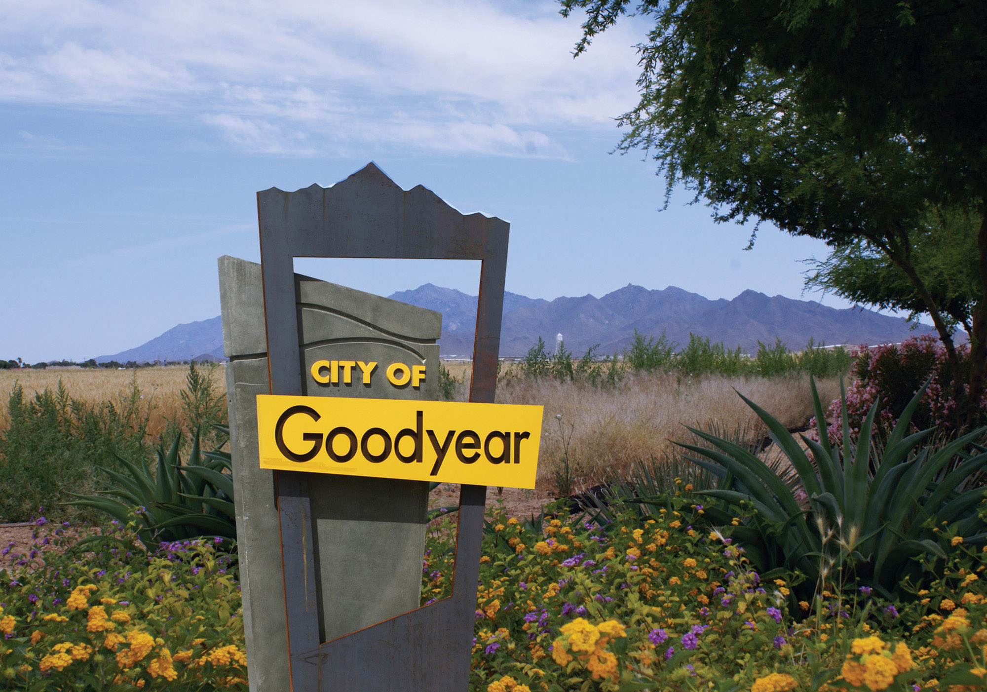 Goodyear Arizona Homes for Sale community image