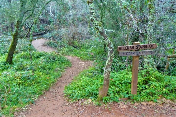 Hidden Falls Hike Auburn California