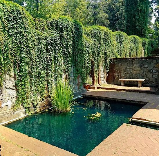 Empire Mine square pool. Grass Valley, California
