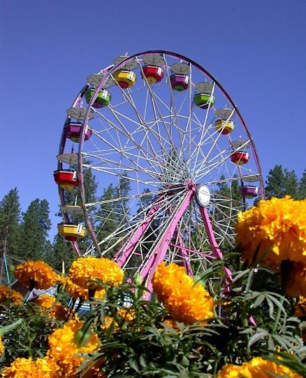 Nevada County fair Farris wheel