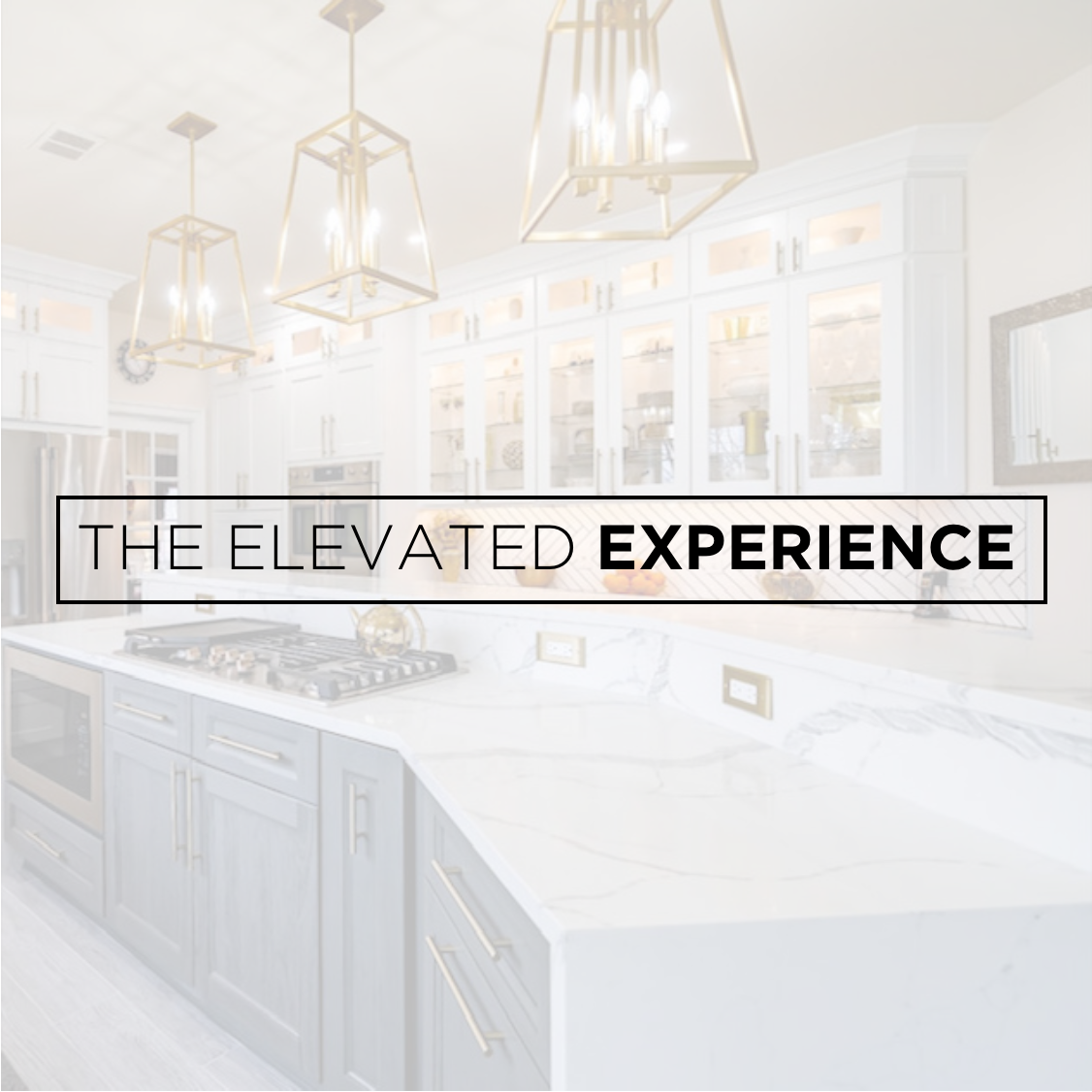 The Elevated Experience
