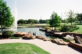 Bedford community image