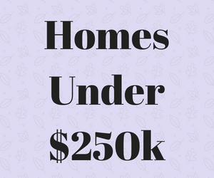 Homes Under $250k