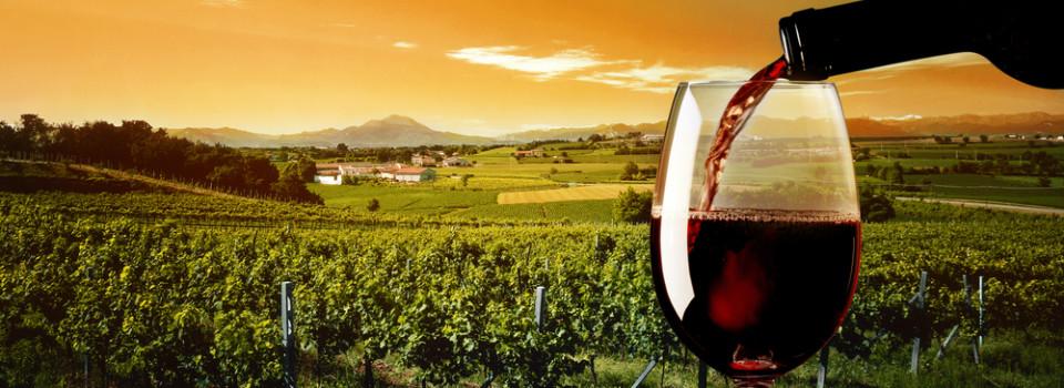 Temecula Wine Country community image